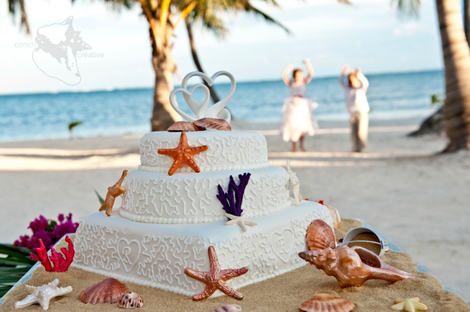 Belize wedding cake