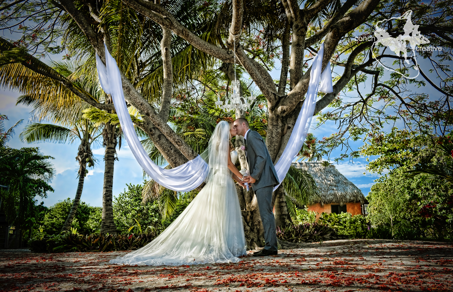 Fairy tales and chandeliers belize wedding belize wedding ambergris caye wedding arubaitofo Image collections