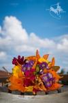 Wedding-Destination-Belize-Photographer