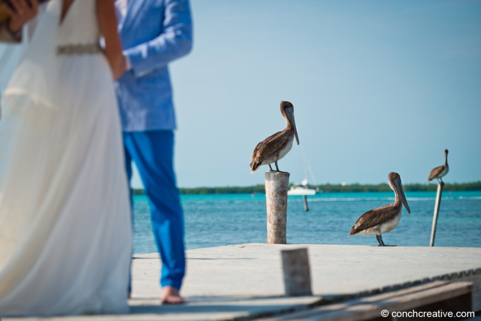 Photography Belize, Belize Wedding Photographer